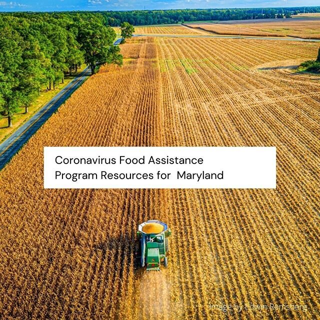 Searching for answers on CFAP?  Don't know what the new program from USDA will do for you?  I pulled this together for Maryland growers to get a better understanding of the Coronavirus Food Assistance Program.  Check it out today by clicking on the link in my profile. @mdgrain @fhcasa @mdsbest @mdagriculture