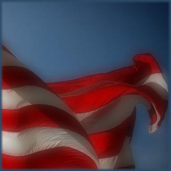 Pledge to the Virtual Flag?
