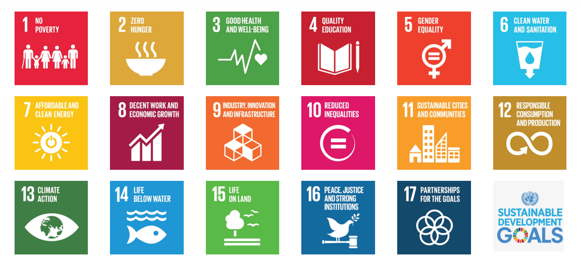 THE UNITED NATIONS' SUSTAINABLE DEVELOPMENT GOALS.