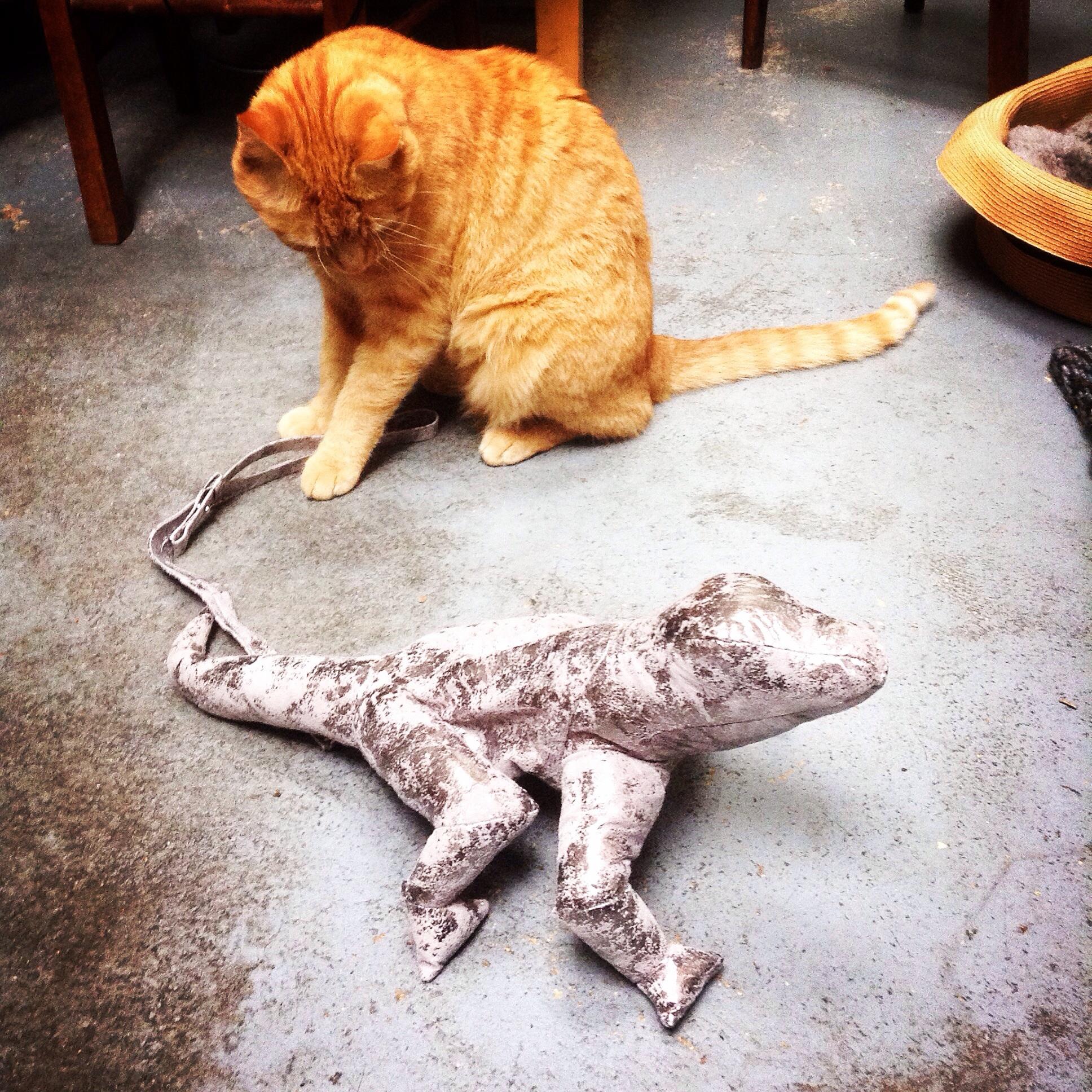 My cat Taggart meeting my new Christopher Raeburn lizard bag