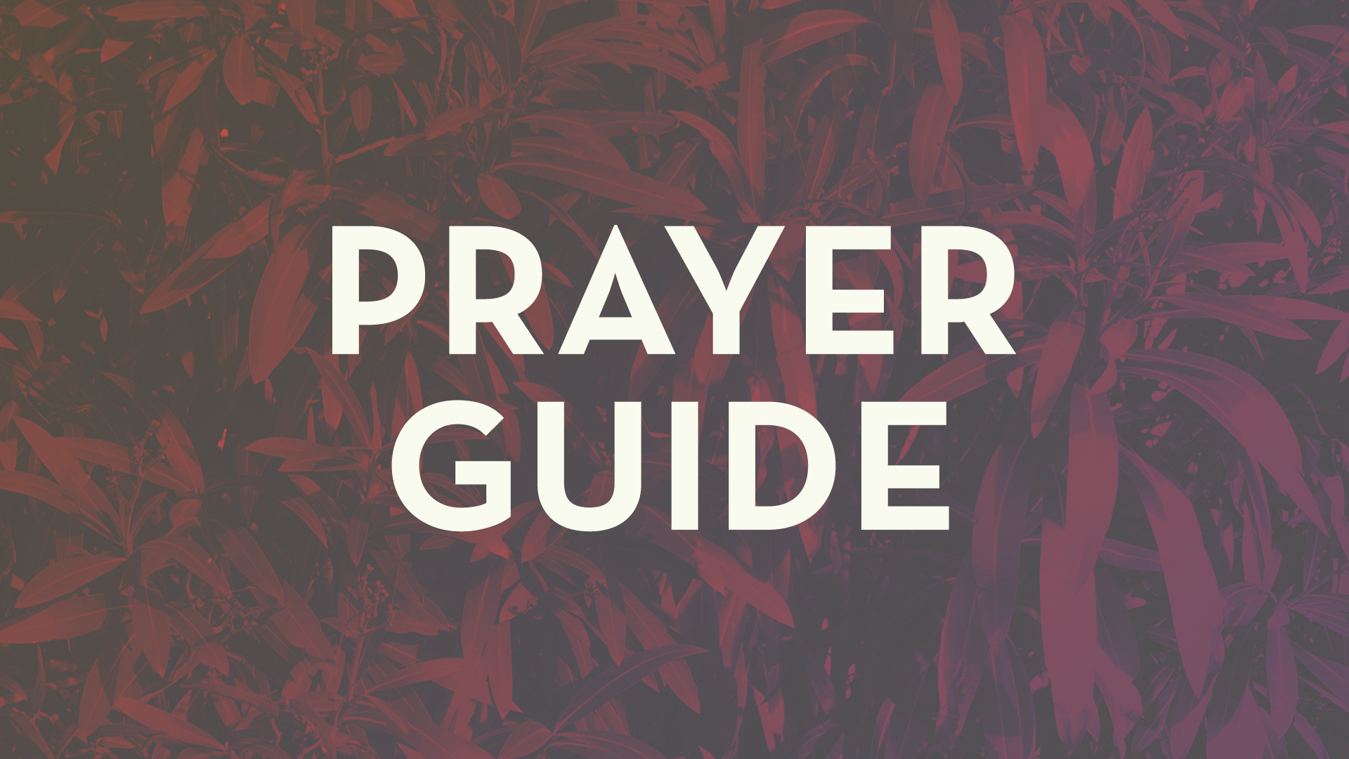 Prayer Guide Slide.jpg
