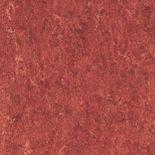 linoleum flooring in firebird red.jpg