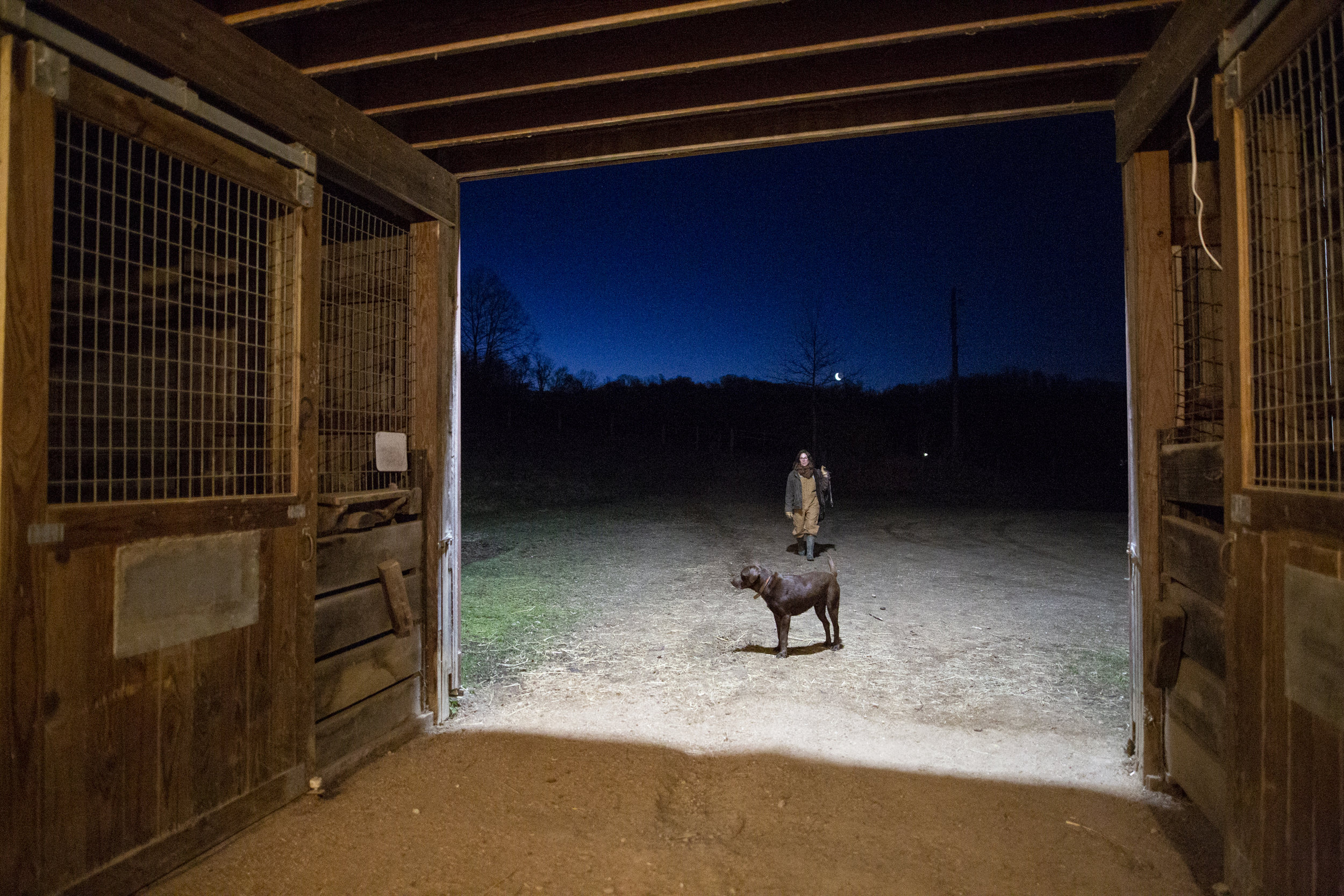 Ashley Ditty walks back to the barn with her dog, Cleveland, after releasing horses in the morning at Looking Glass Farm. Ashley and Jeff Ditty named their farm after its original owners, the Glass family, in order to honor their legacy.