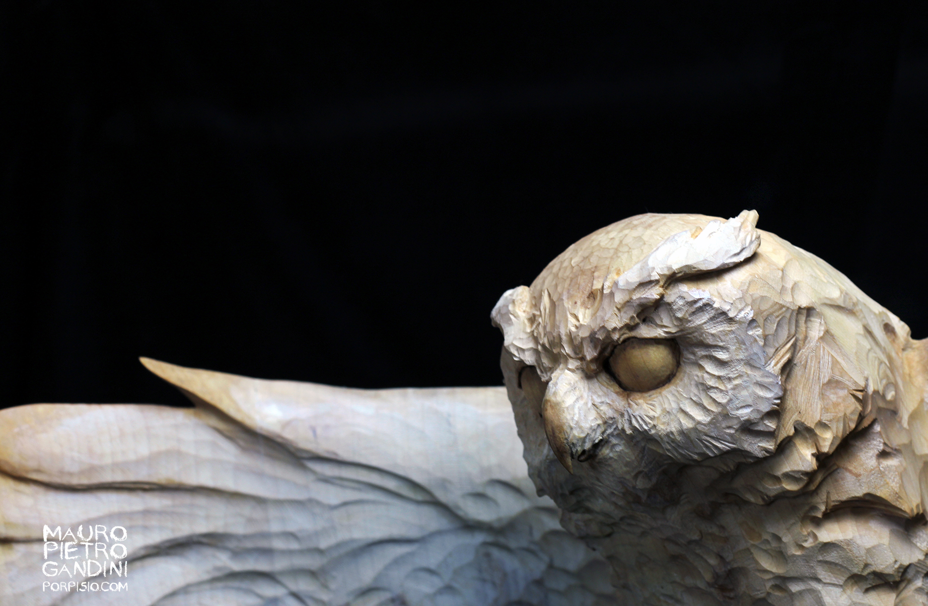 Owl, maple wood