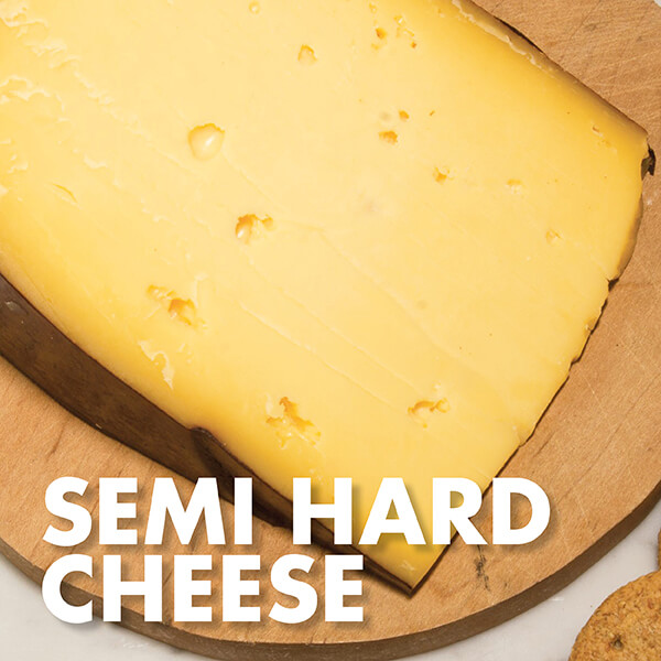 Semi Hard Cheese