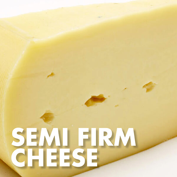 Semi Firm Cheese