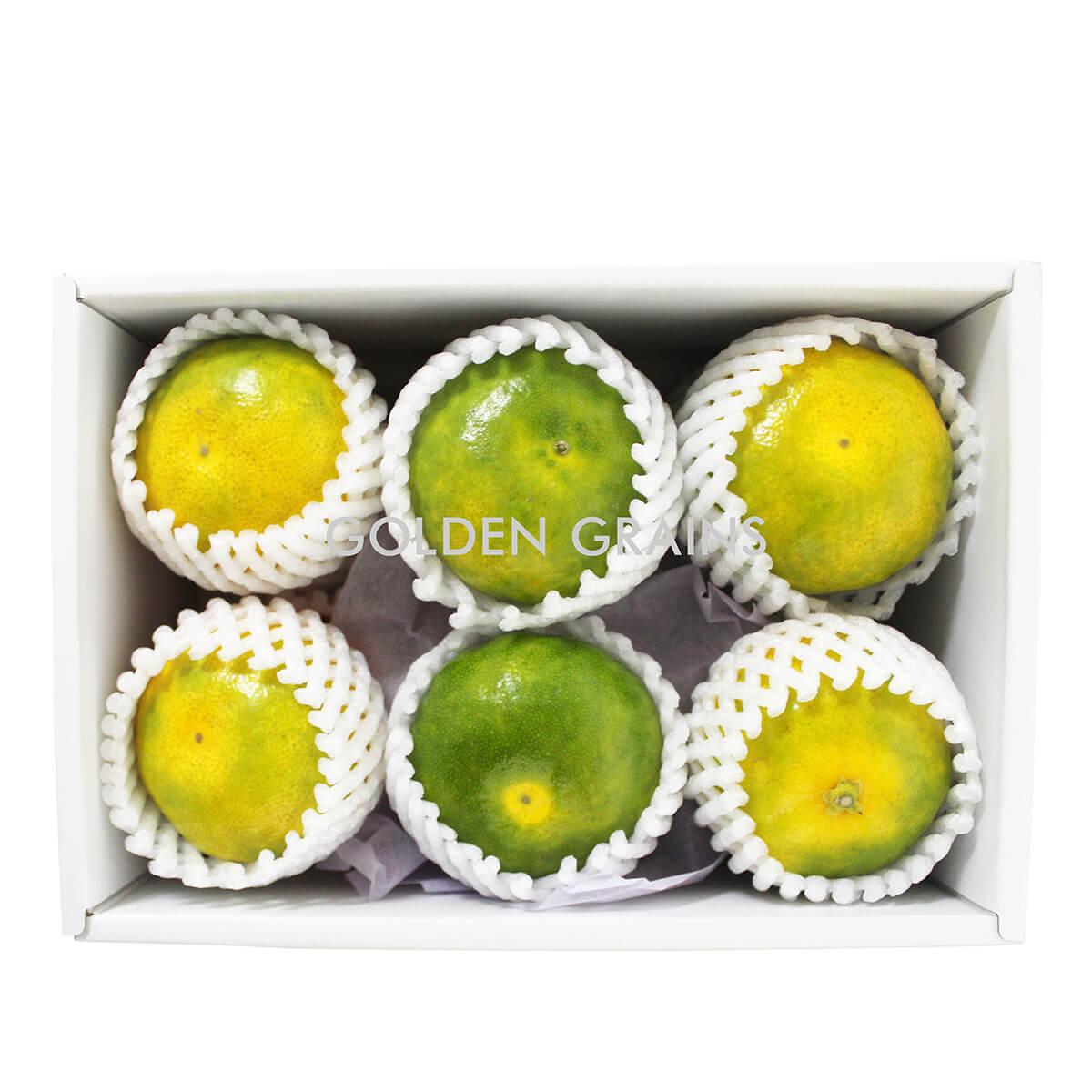 Golden Grains Dubai Export - Japan Fresh Fruits - Green Orange.jpg