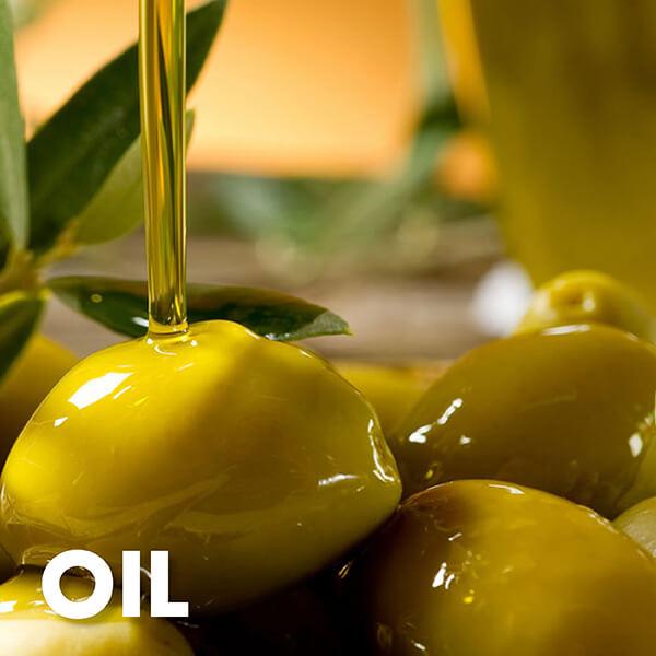 Golden Grains Dubai Export Oil