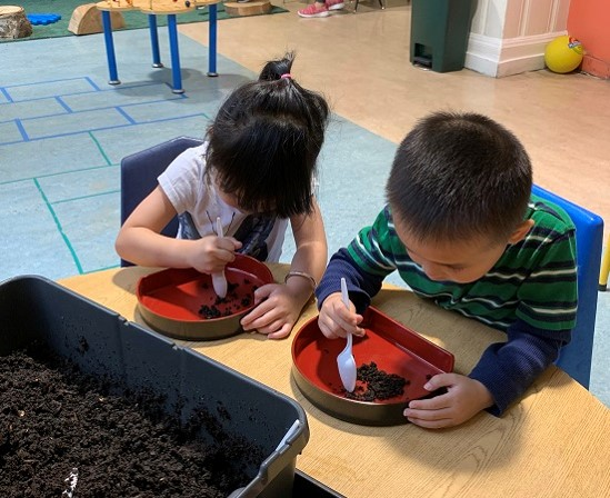 """Children used the new earthworm bin to dig in the dirt and explore earthworms, asking investigative questions such as """"Why do they go so slow?"""" Teacher asked, """"What do you think, why do they go slow?"""" Child responded, """"They don't have legs."""" Teacher affirmed the answer and explained about the muscles on segments which help earthworms move.  This learning experience provided an opportunity for a lot of interaction and learning. One child said, """"Baby worm."""" Another added, """"I have a mommy worm because it's so long, mommys are long.""""  Children developed mathematical skills by counting and comparing short and long worms.  They developed respect for nature by being gentle with the worms during exploration and feeding them food scraps.  Children learned how earthworms move and where they live."""