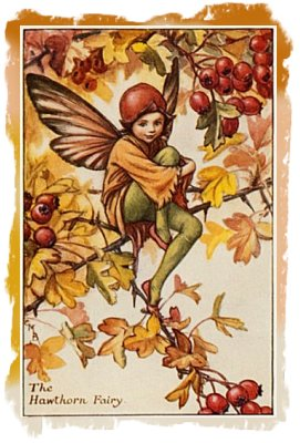 Image: Cicely Mary Barker