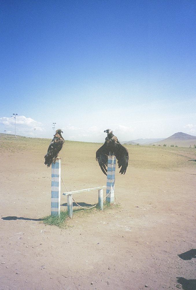 Mongolia Postcards_11.jpg
