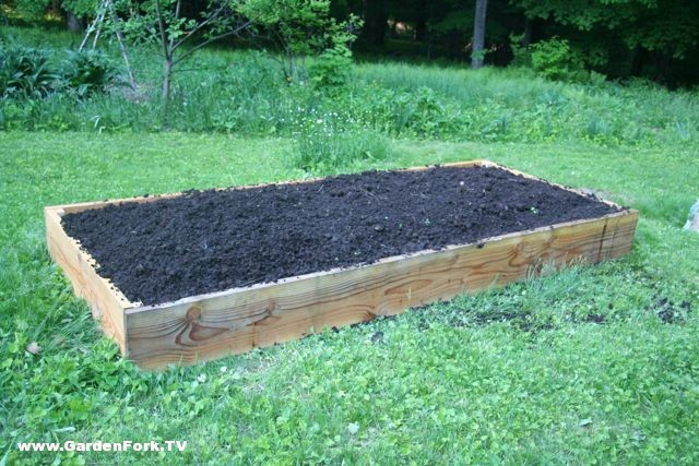 how-to-build-raised-beds.jpg