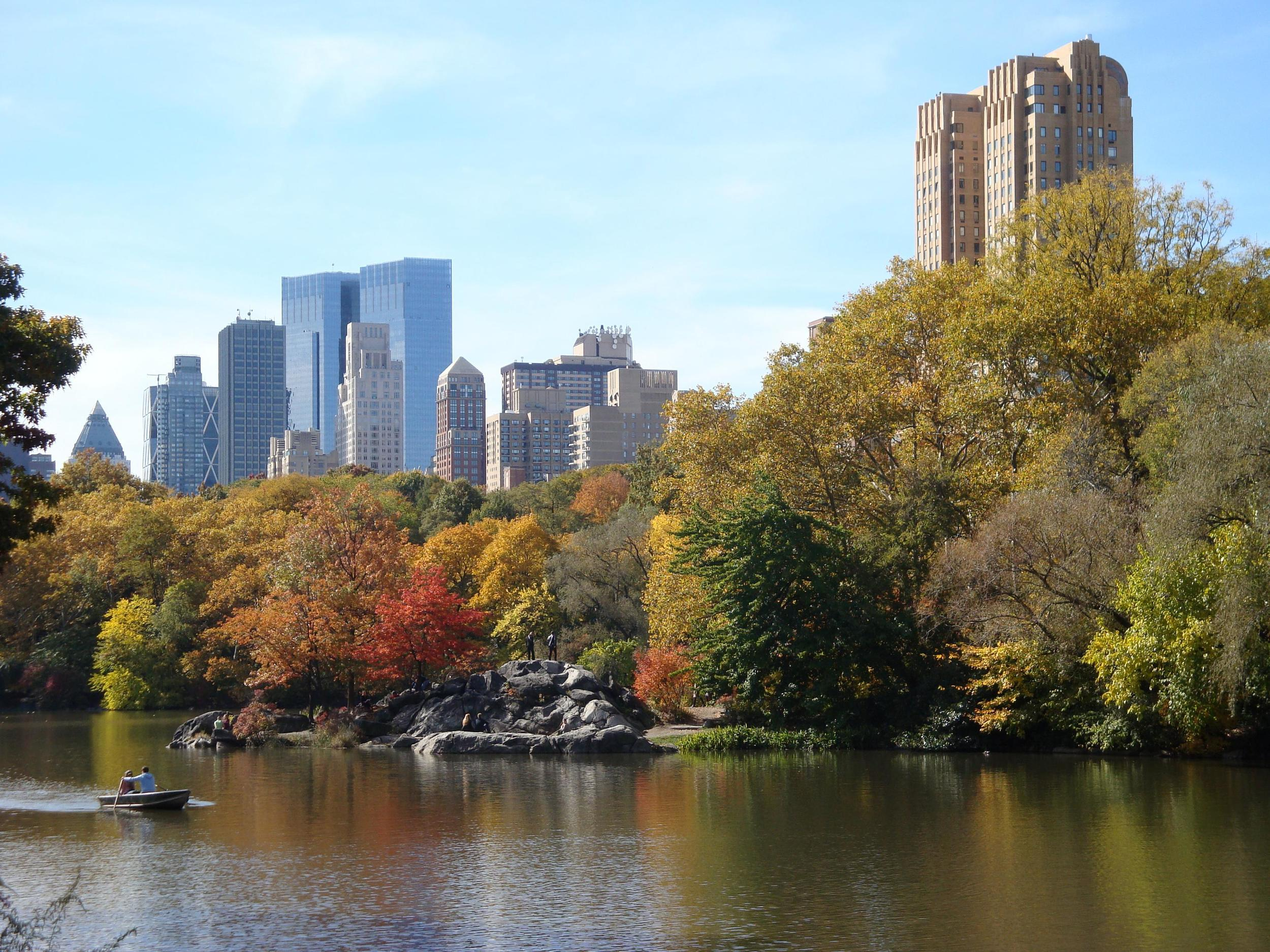 CENTRAL PARK AND CITY VIEW