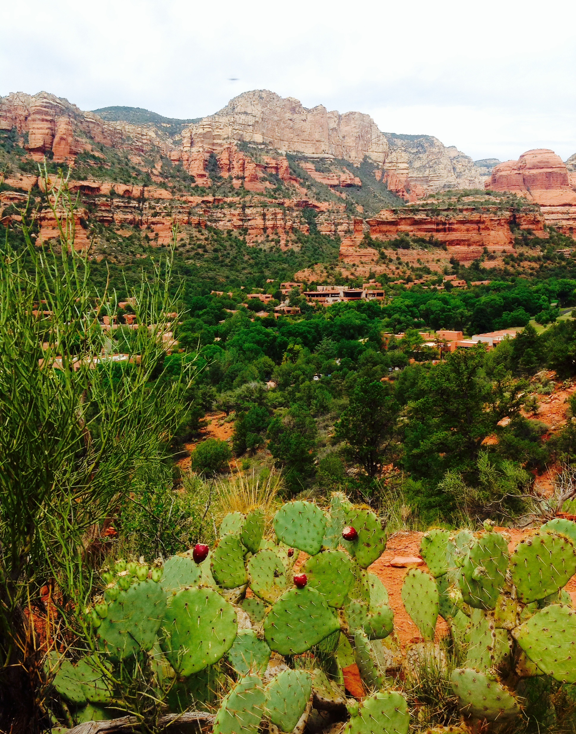 View from our hike- overlooking the property