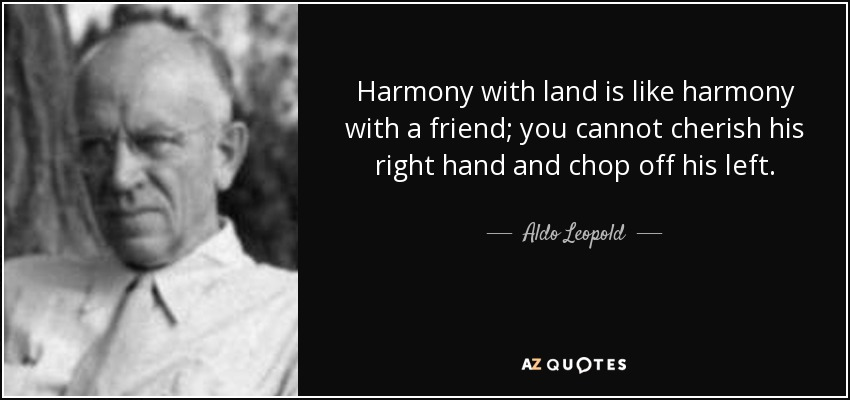 quote-harmony-with-land-is-like-harmony-with-a-friend-you-cannot-cherish-his-right-hand-and-aldo-leopold-17-31-05.jpg