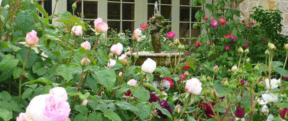 garden2ws.jpg