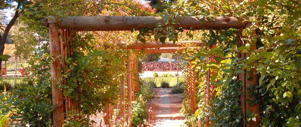garden11ws.jpg