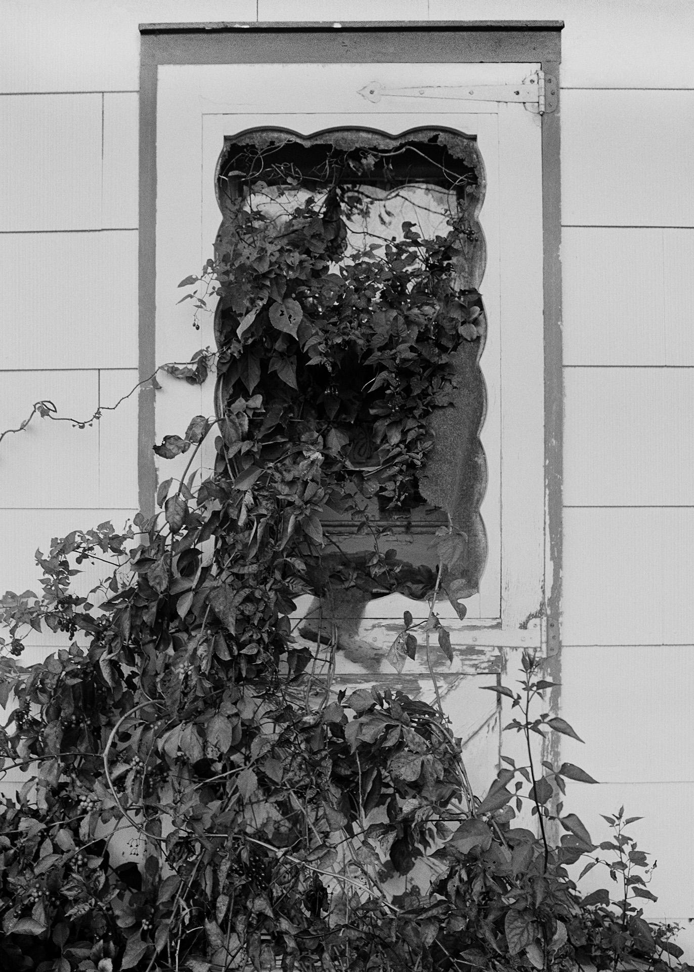Door on Pacific Street