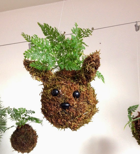 Art of Plants - Rabbit Plant