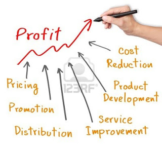 16041657-business-hand-writing-profit-improvement-by-marketing-strategy--pricing--promotion--product-developm.jpg