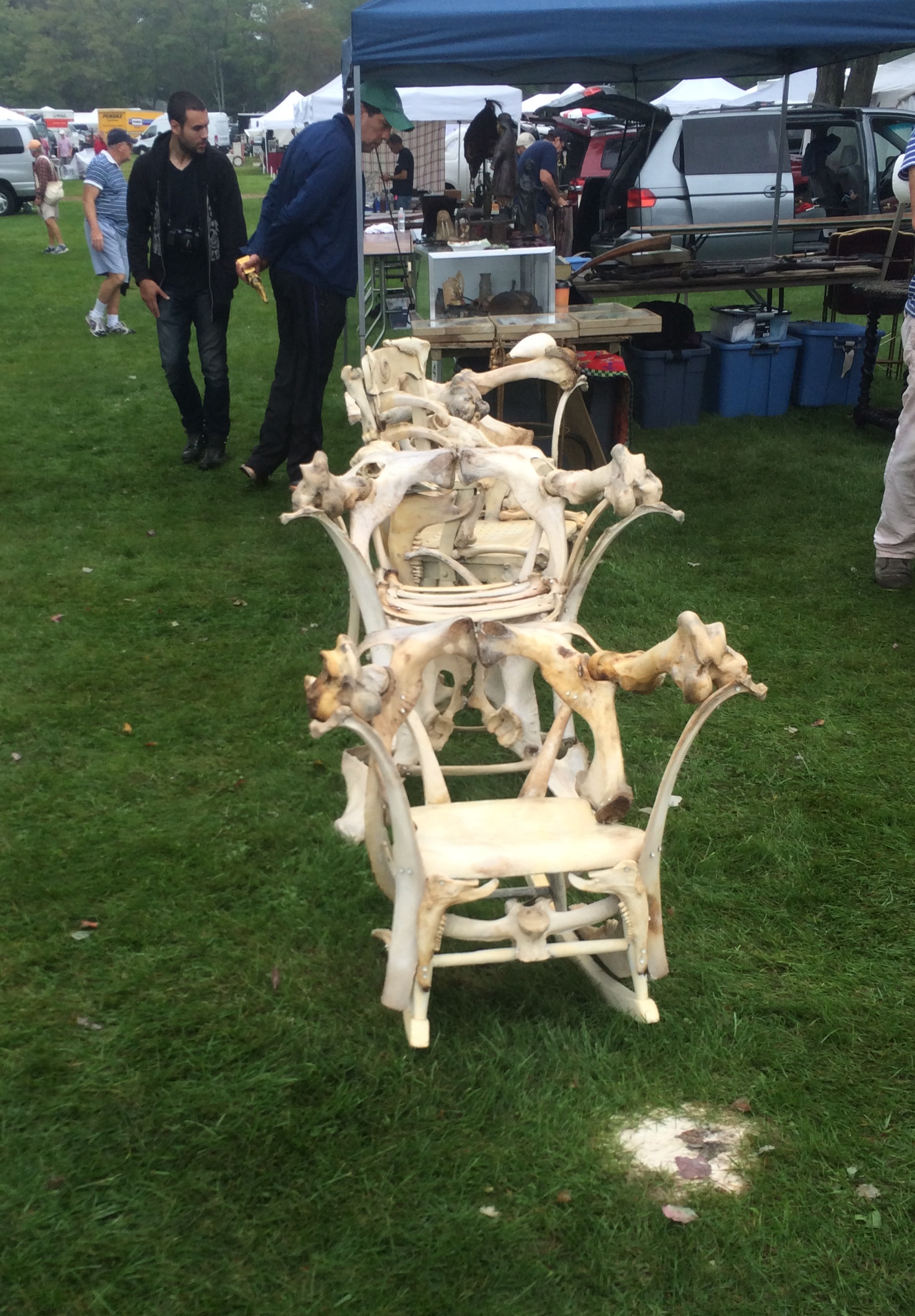 Yes, these are chairs made out of bones. Very unique, but also super creepy.