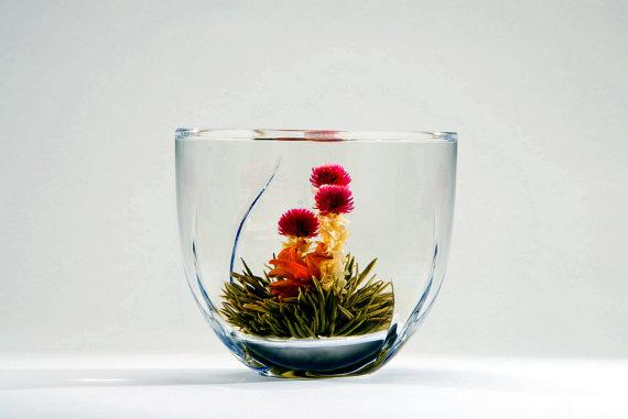 Blooming Tea by  Duval Tea