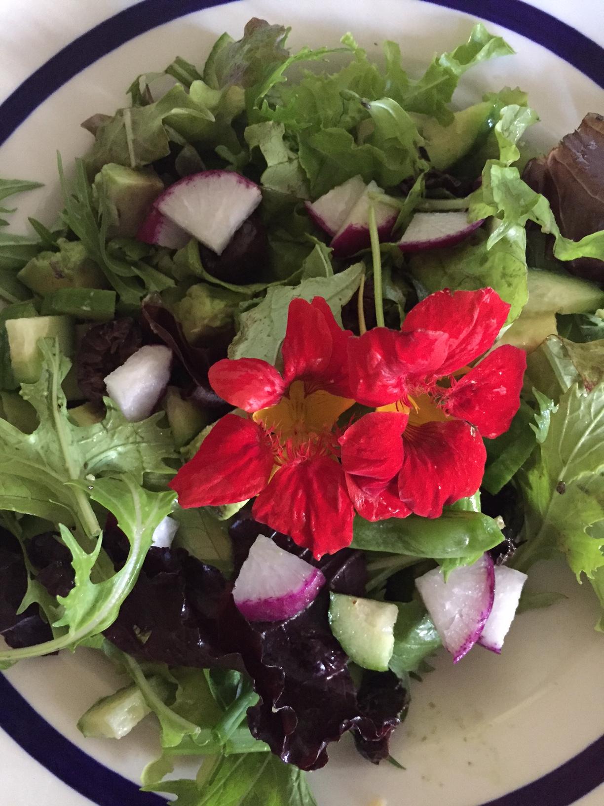 TG salad 2648.jpg