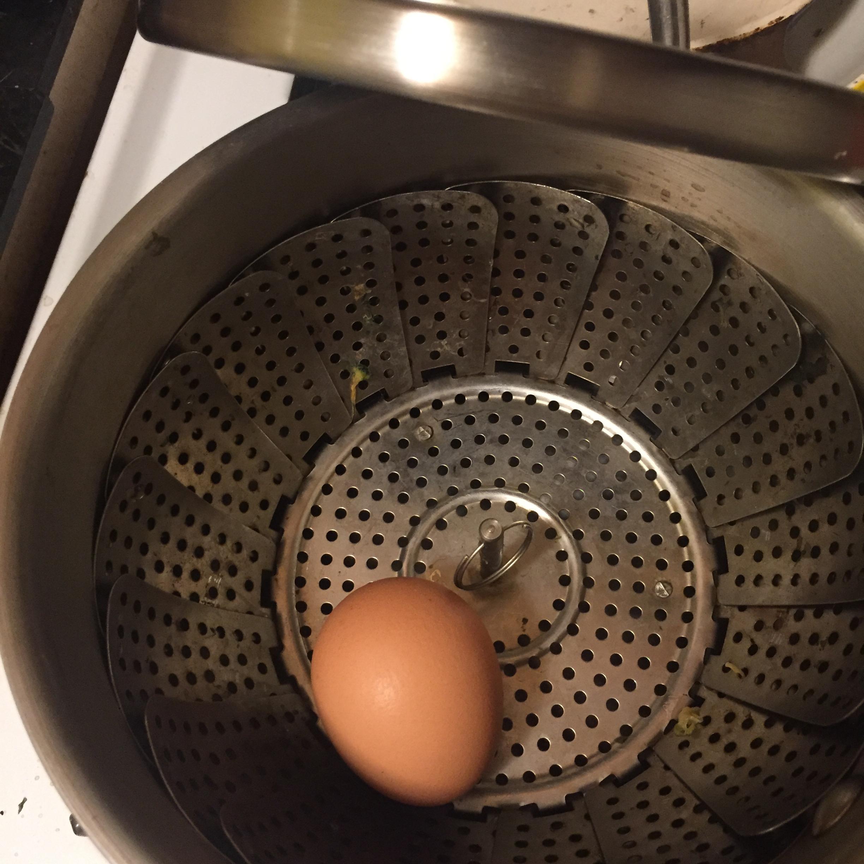 egg in steamer_4498.jpg