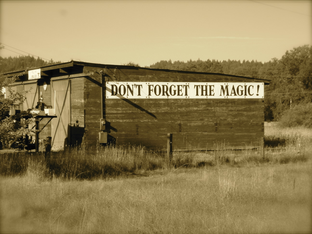 In case we need a reminder...Don't Forget the Magic! (Photo Credit: Deborah Parrish)