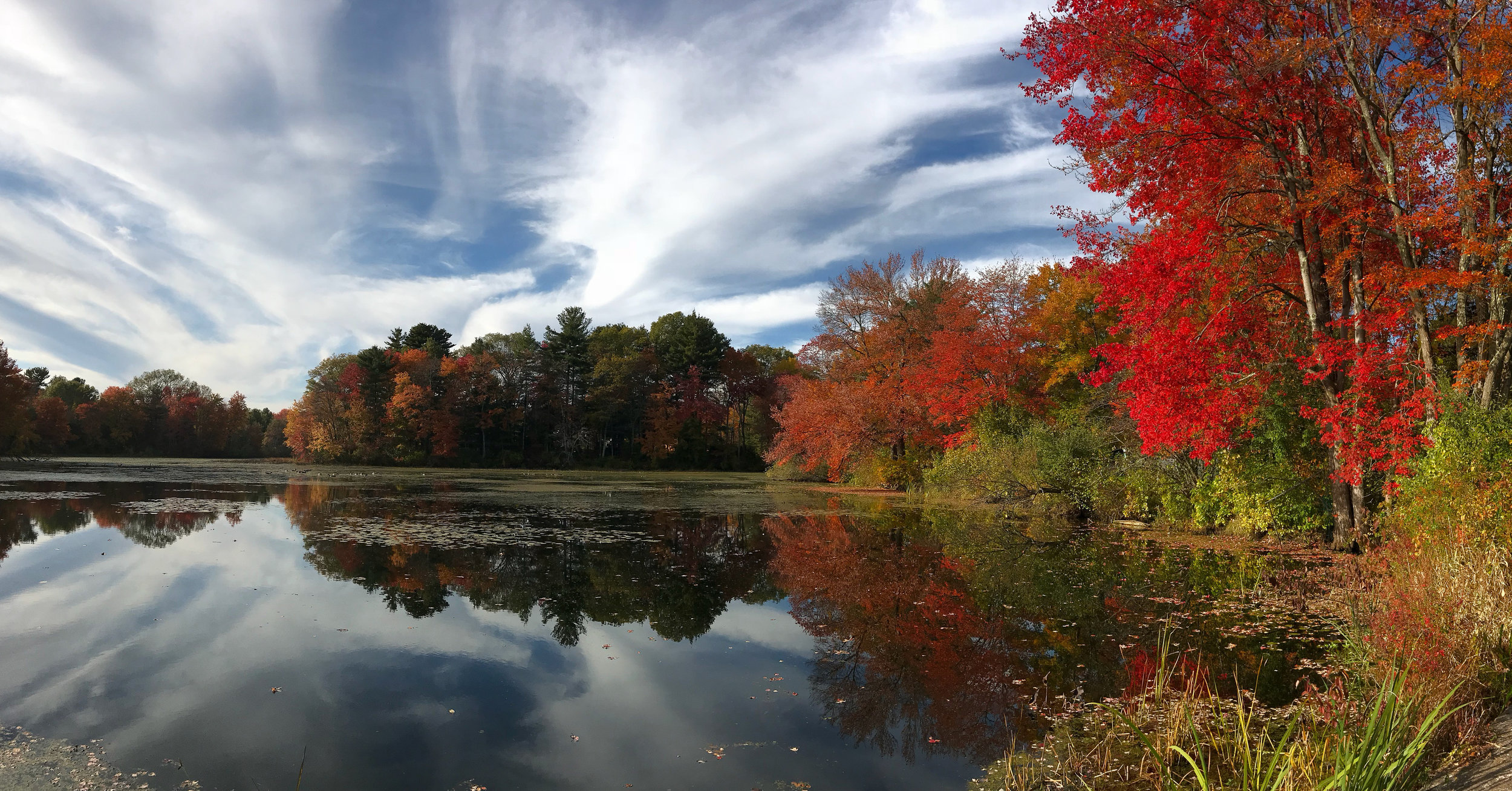 Factory Pond (Holliston, Massachusetts)