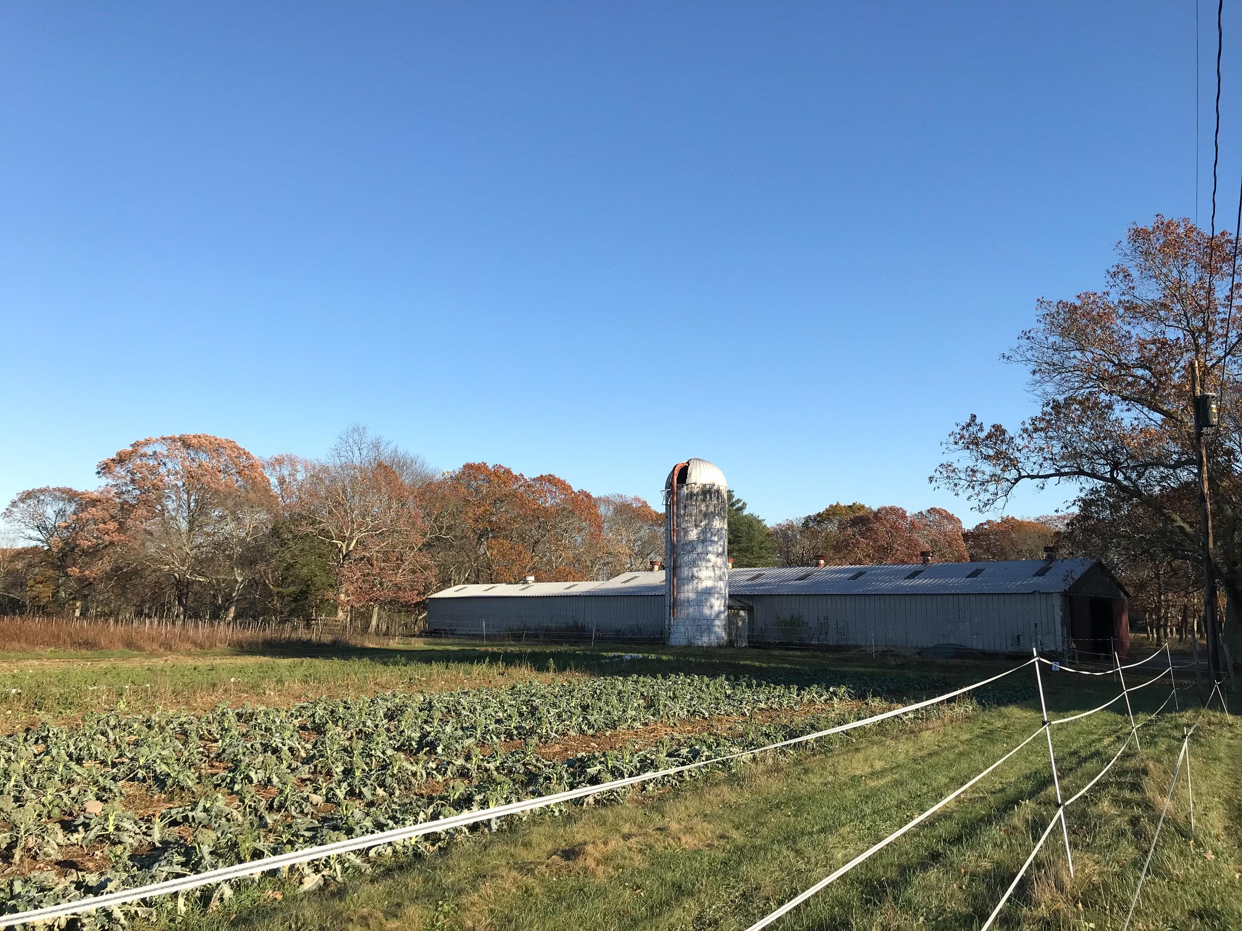 Powisset Farm (Dover, Massachusetts)