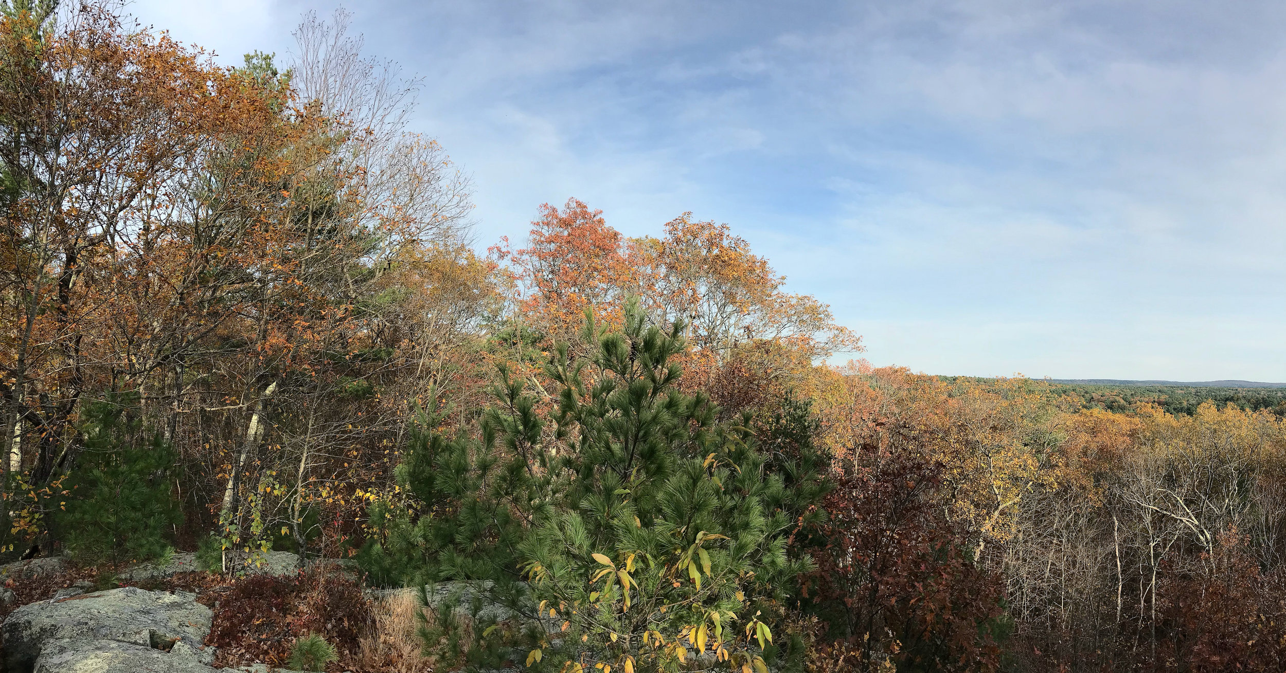View from Noon Hill (Medfield, Massachussetts)