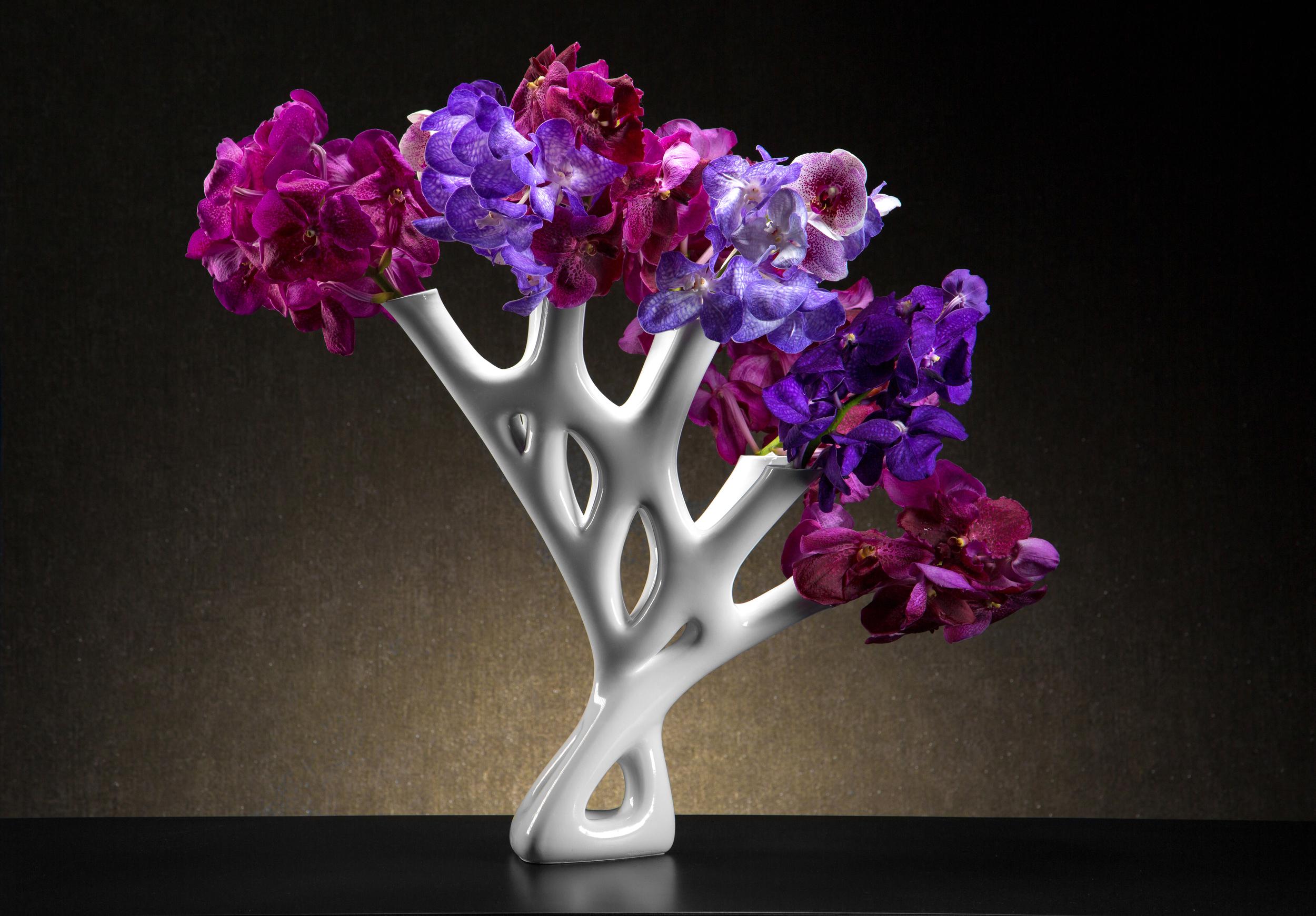 CORAL-06-Floral.jpg