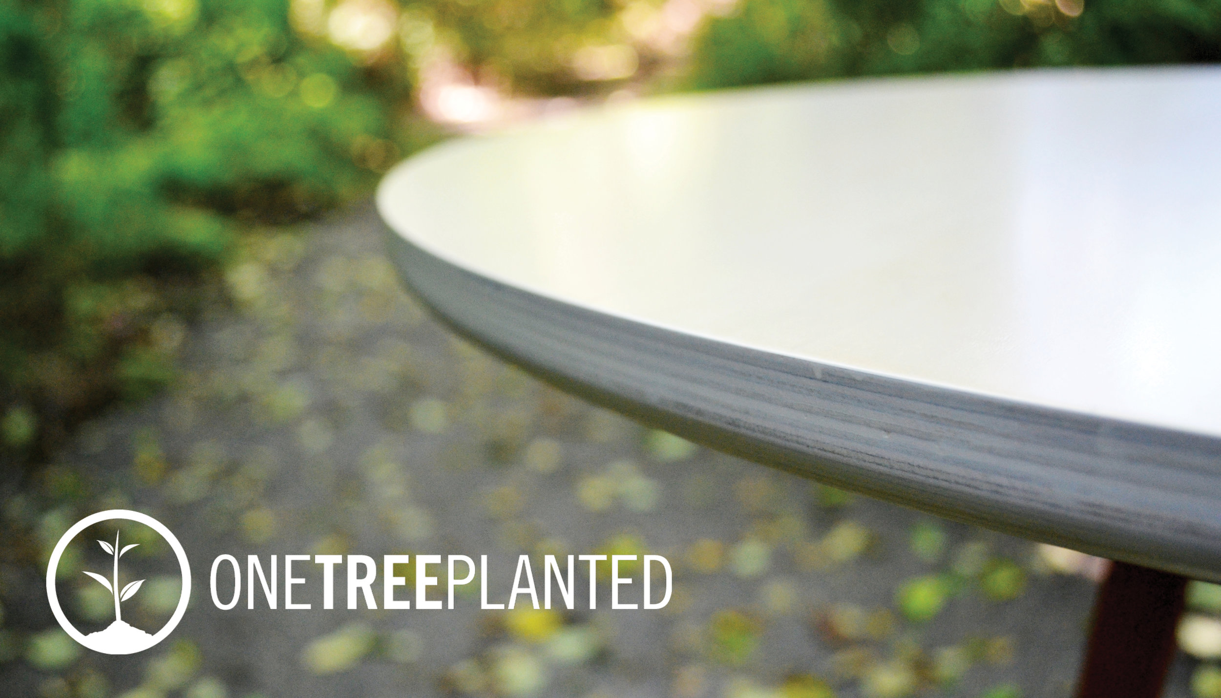 One Tree Planted2.jpg
