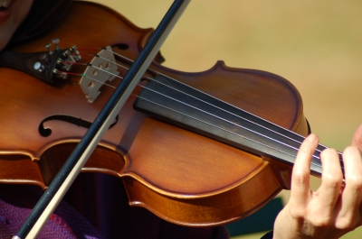 violin 4.jpg