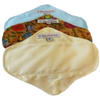 earth-wise-exotic-aqua-menstrual-pads-medium.jpg