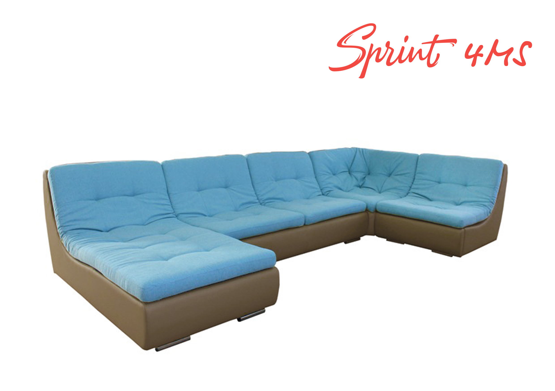 Sprint 4MS.jpg
