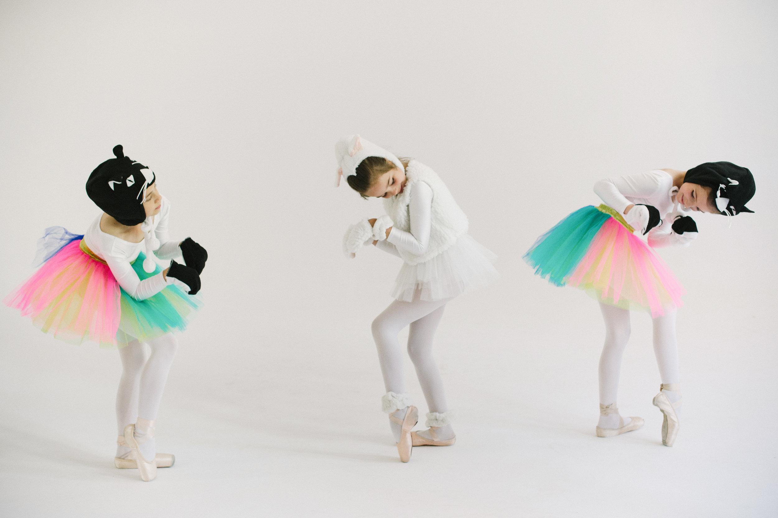 Spoleczne Ognisko baletowe w Lublinie Zapisy