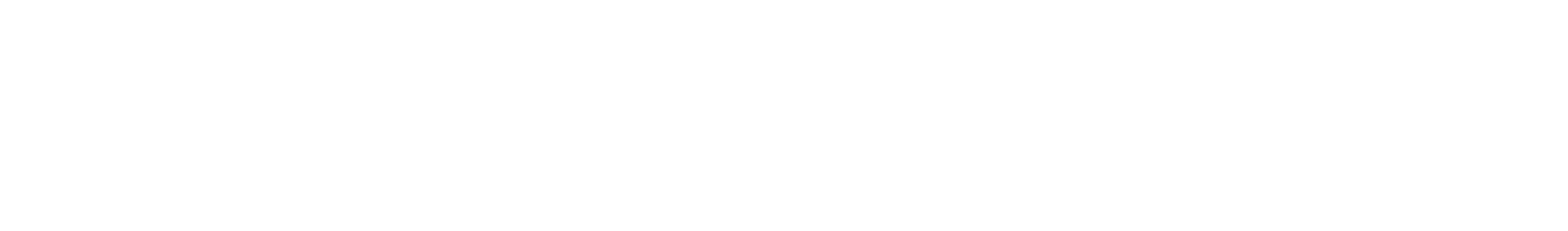 Official Logo white.png