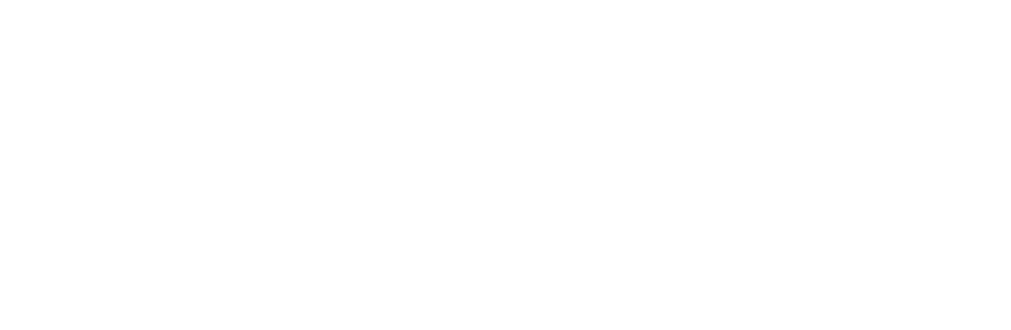 Alpha_Industries_logo_white.png