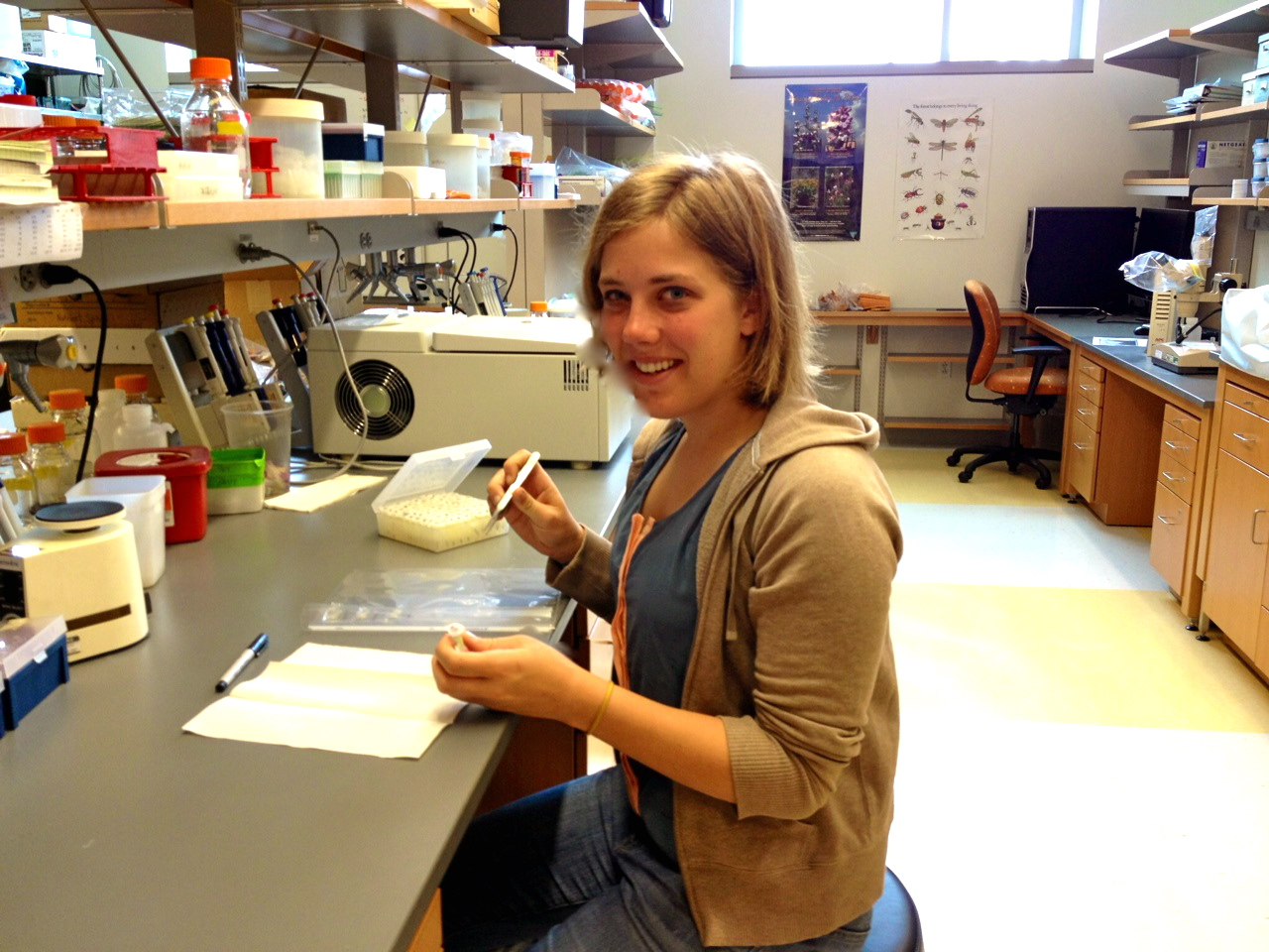 Sarah Heyborne preparing to measure crickets.