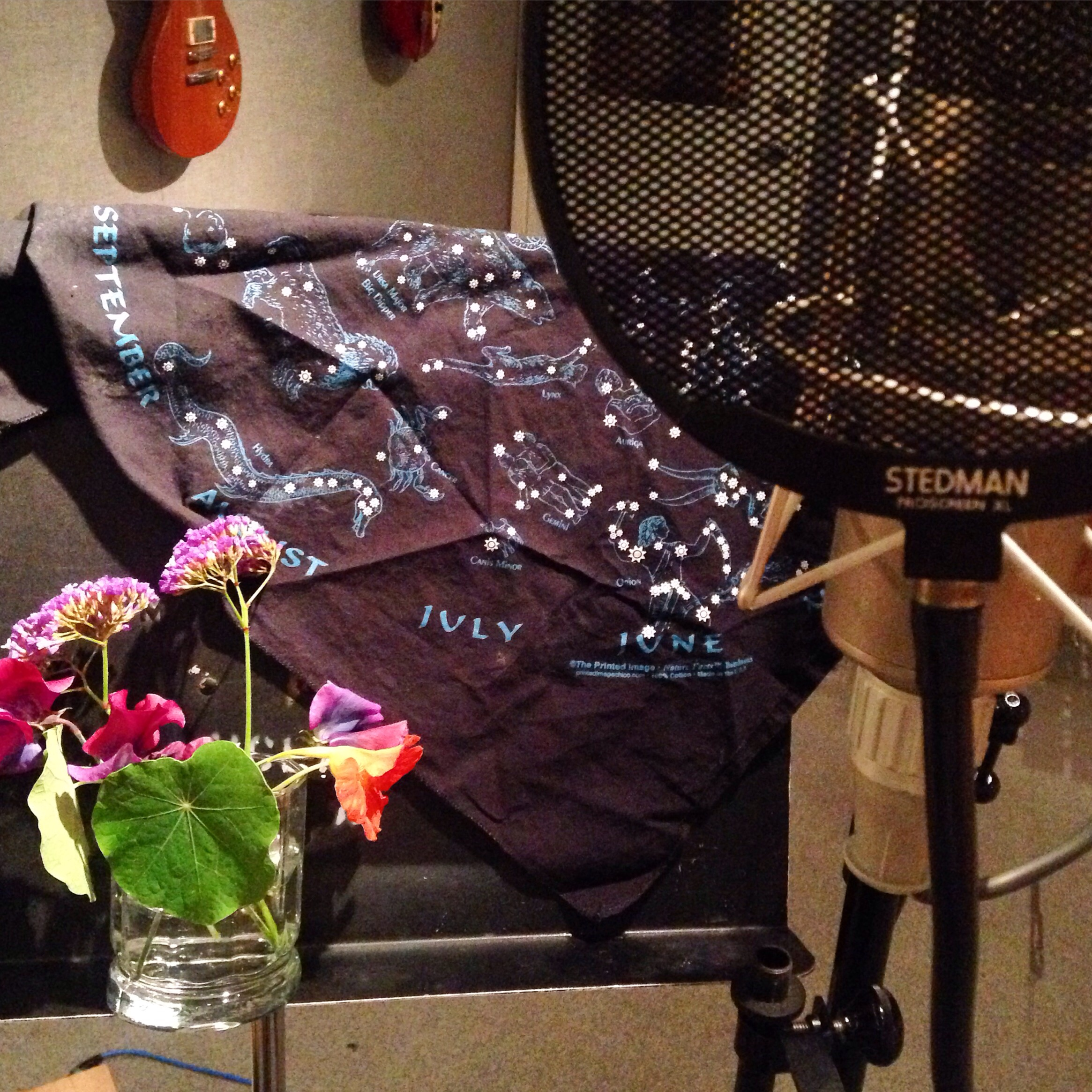 Every vocal booth should have flowers and the cosmos. I like having lots of beauty with me when I'm doing such new, vulnerable territory!