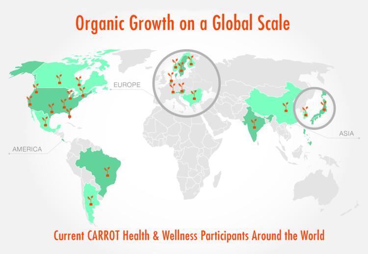 Soil is Fertile for Growing CARROT