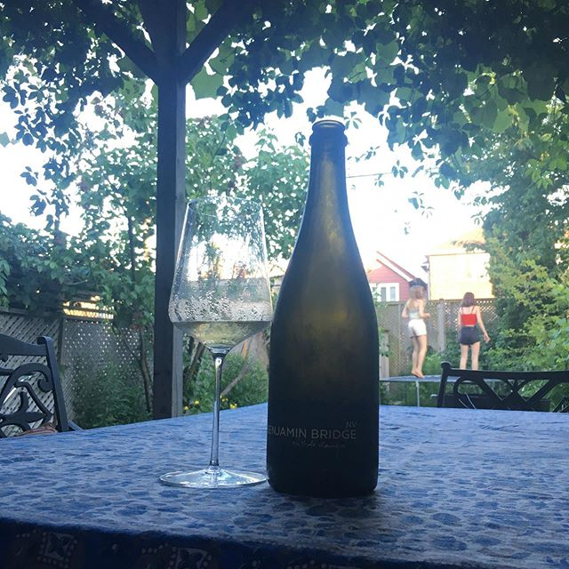 Freshly power-washed patio (so satisfying), vine covered shade, BBQ, trampoline, and some first rate #Canadian #sparkling from @benjaminbridge #thisiscanada ! Happy Canada Day to all you fine humans.