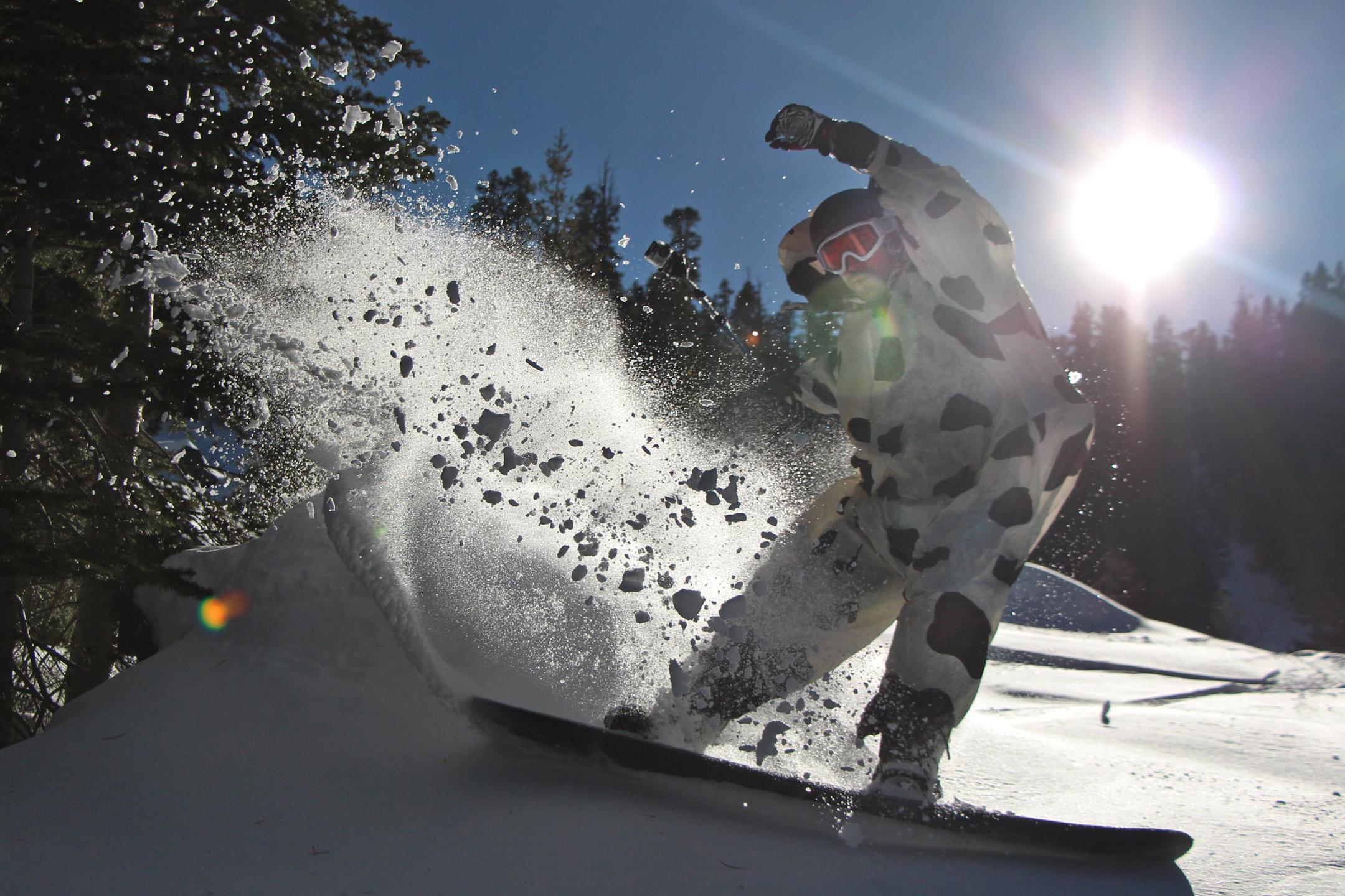 My friend Zach Zach, slashing backcountrypow in an inflatable cow suit.