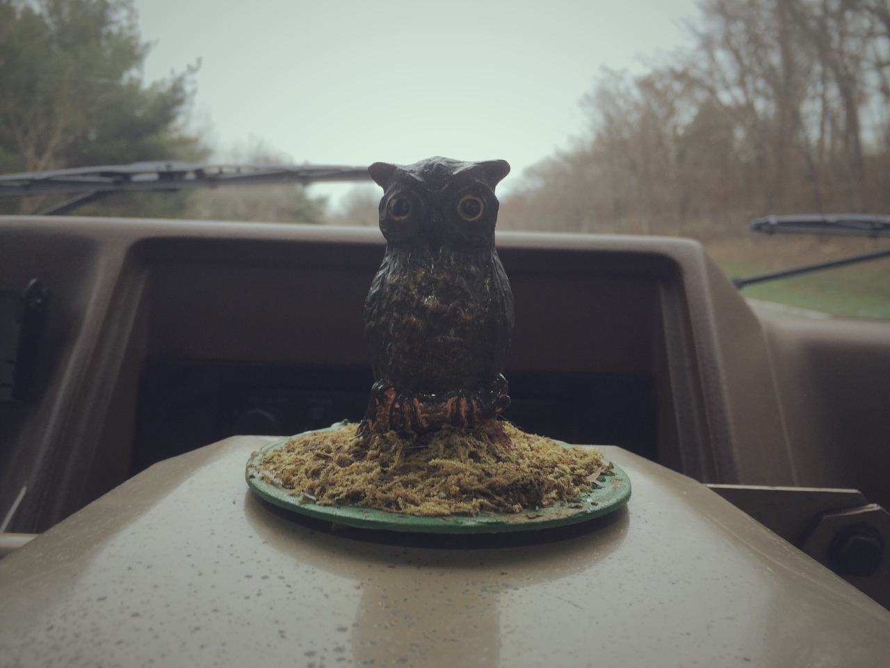 11.21.15 Please give a warm welcome to the newest member of our band, Edwing the Bus Owl! Scored at a thrift shop in Lake Wallenpaupack for $3.