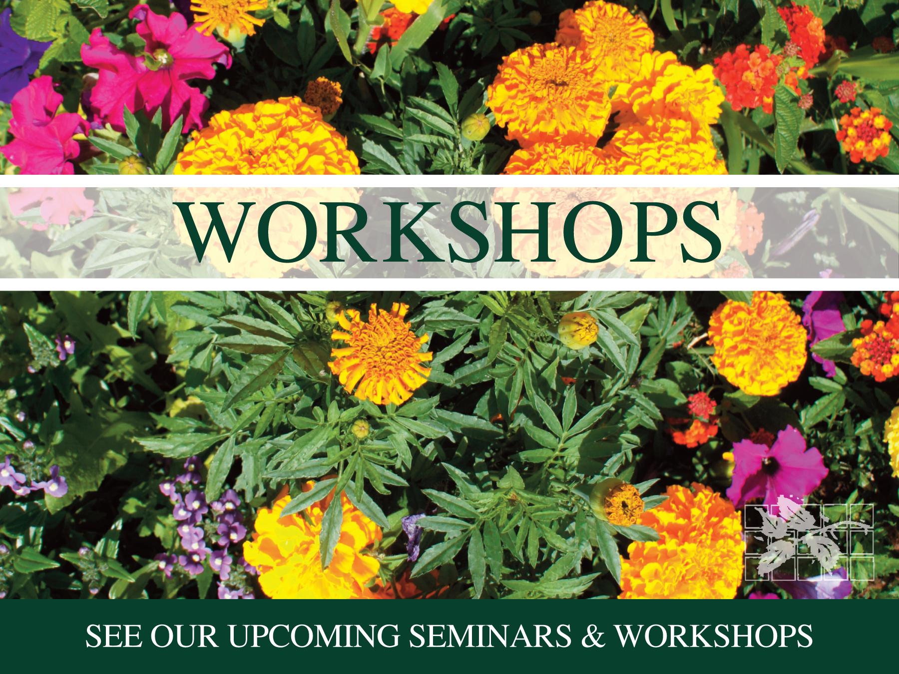 Upcoming workshops...