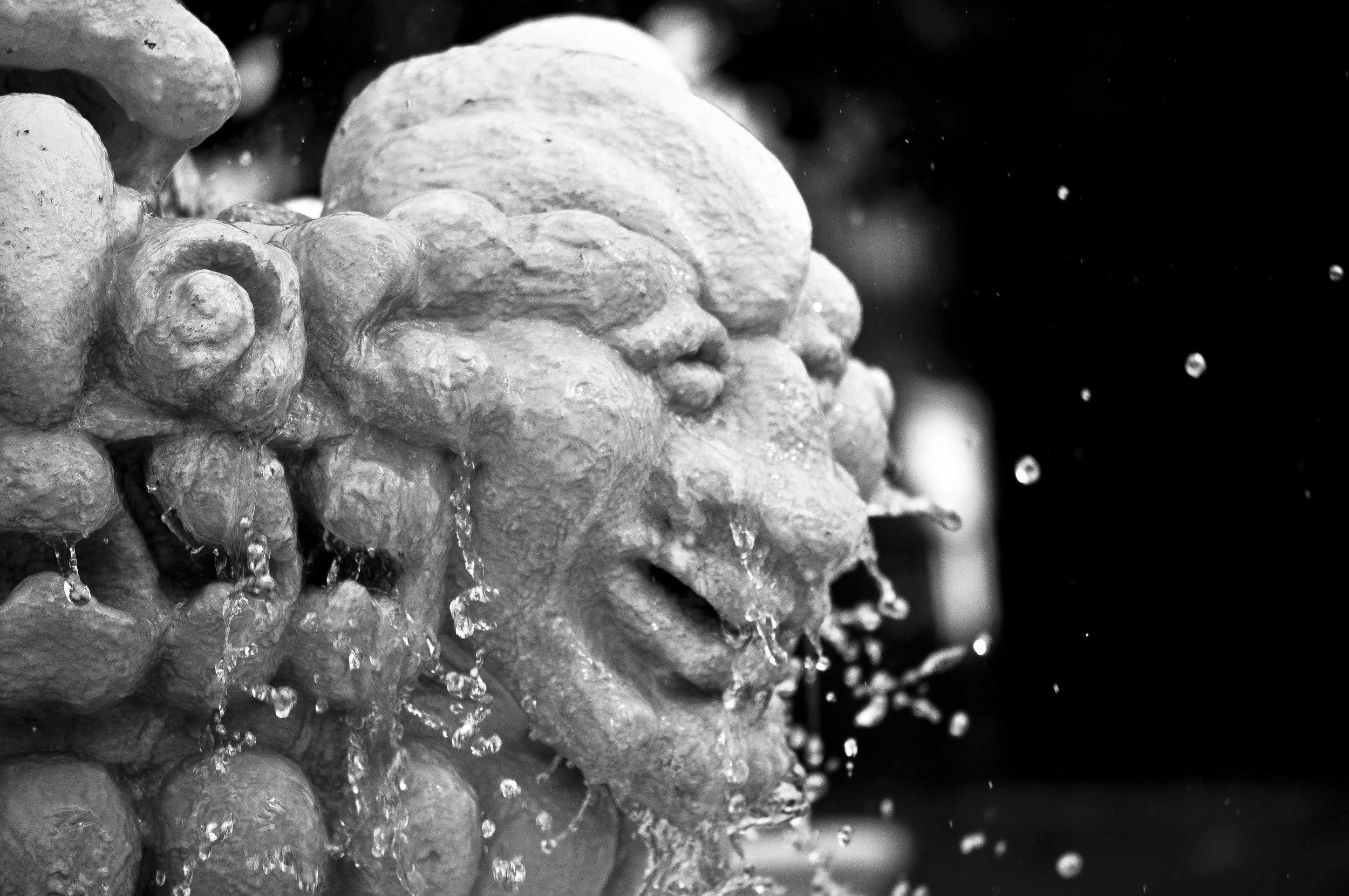 Botanical Garden Fountain Face.jpg