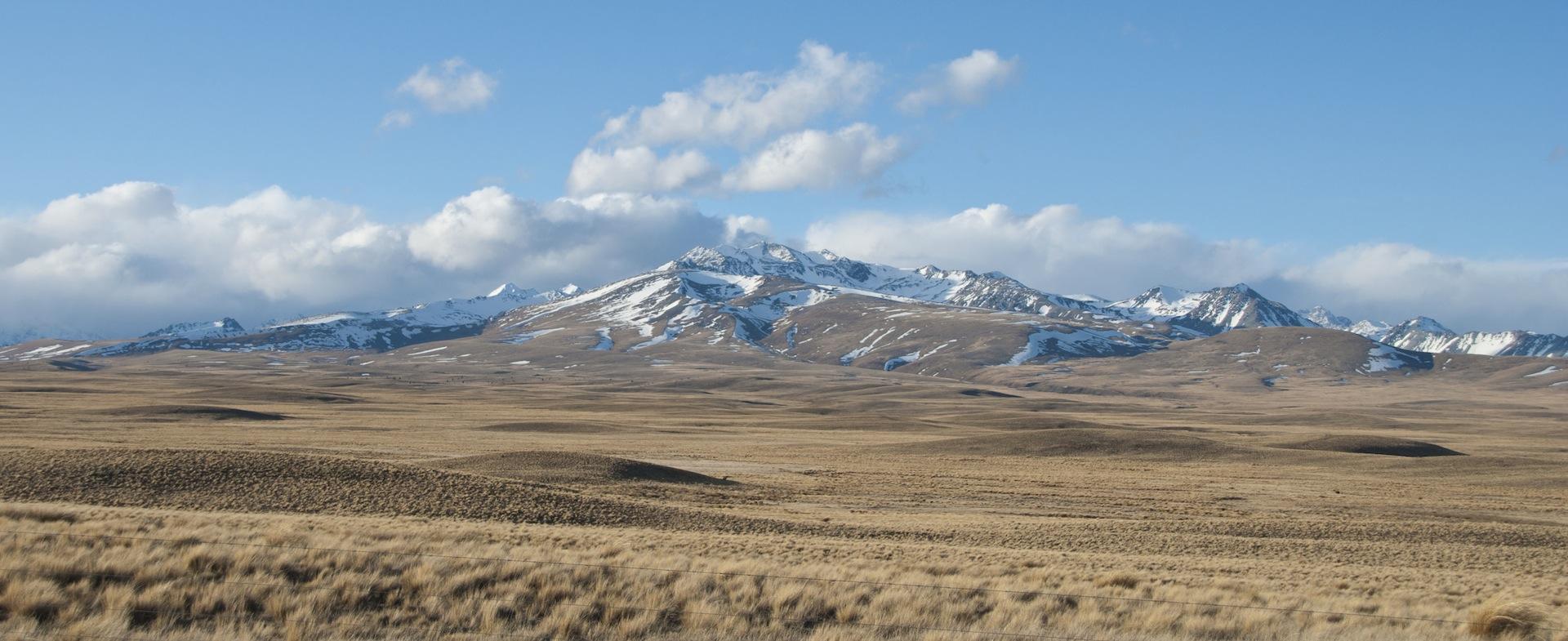 New Zealand Grasslands.jpg