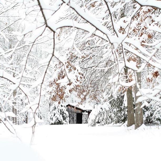 """Ready for a big Kentucky snow"" Morehead, Kentucky  Photo via Instagrammer  @morganravenscraft"